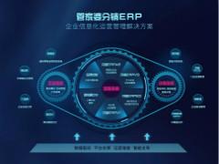 <b>管家婆分销ERP整体解决方案</b>